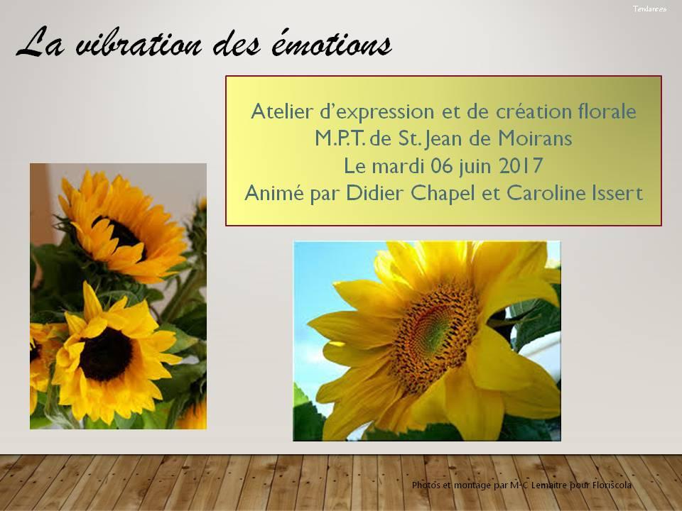 La vibration des émotions