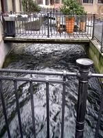 Kanal auf dem Rain
