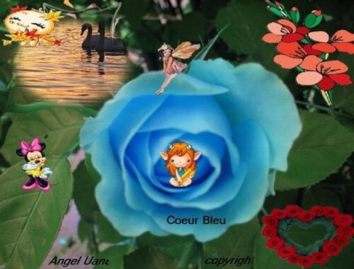Coeur-Bleu----Angel-Uane