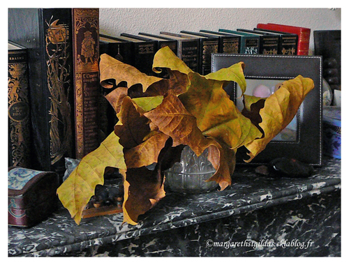 Chronique des jours d'automne - Chronicle of the autumnal days