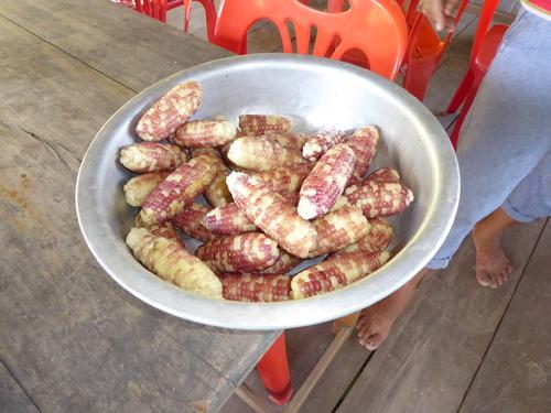 J9,en direction de Muang Ngoi, Laos
