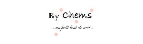 Zoom sur le blog de Chems