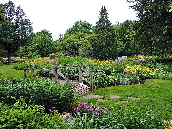 Montréal jardin botanique des hémérocalles 2