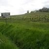Vignoble du Floc de Gascogne