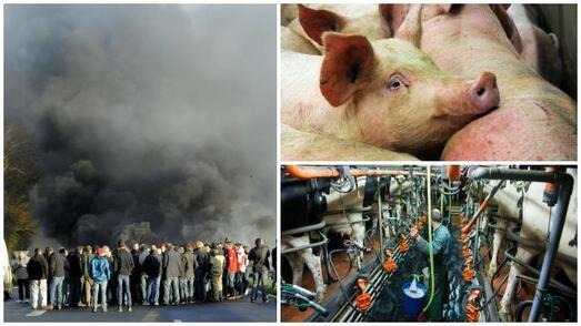 Les agriculteurs sont de nouveau sur les routes pour crier leur colère.
