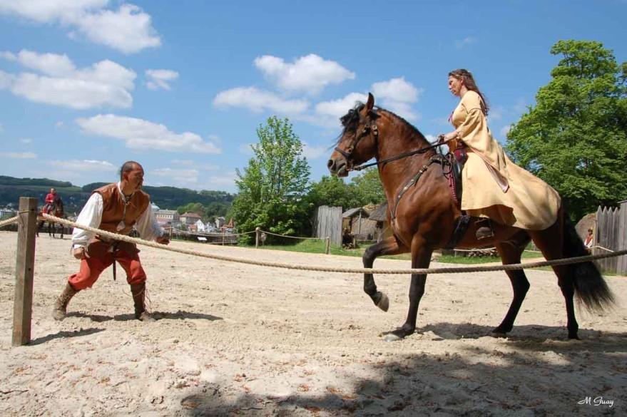 cheval-ennemi-9053.jpg
