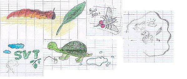 illustrations-eleves.jpg