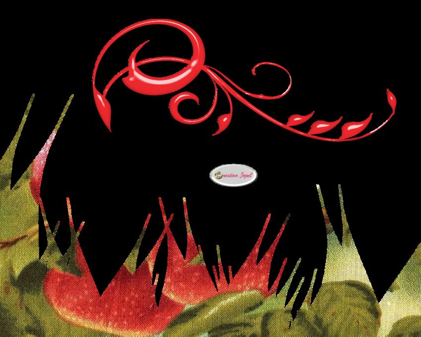 Kit oiseaux rouge et Blog en pause deux semaines