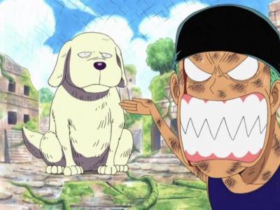 Histoire One Piece
