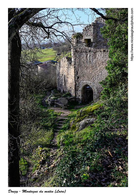 Donzy médiéval dans la Loire