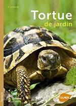La tortue de terre