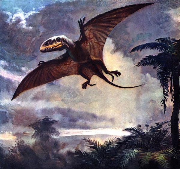 préhistoriques créatures-animaux-14