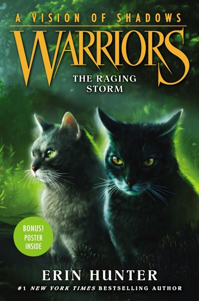 (Tome 6) The Raging Storm