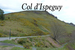 Col dIspeguy