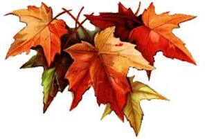 Tribute  to  the  Fall ..
