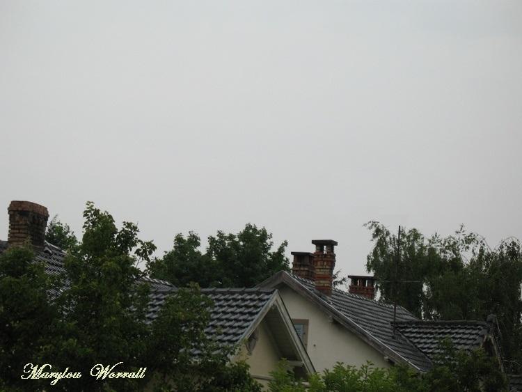 Ciel d'Alsace 220