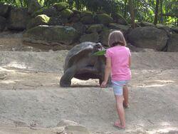 Une toute autre vie aux Seychelles
