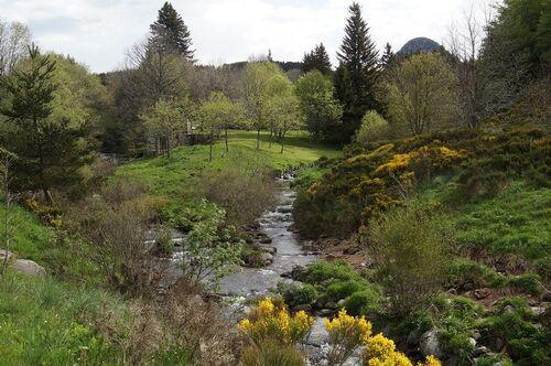 Mont Gerbier-de-Jonc  (Ardèche)