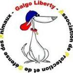CORINTO, l'invisible attend désespérement SA famille à lui / Galgo Liberty