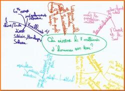 cartes mentales pour réviser la leçon sur la population en géographie