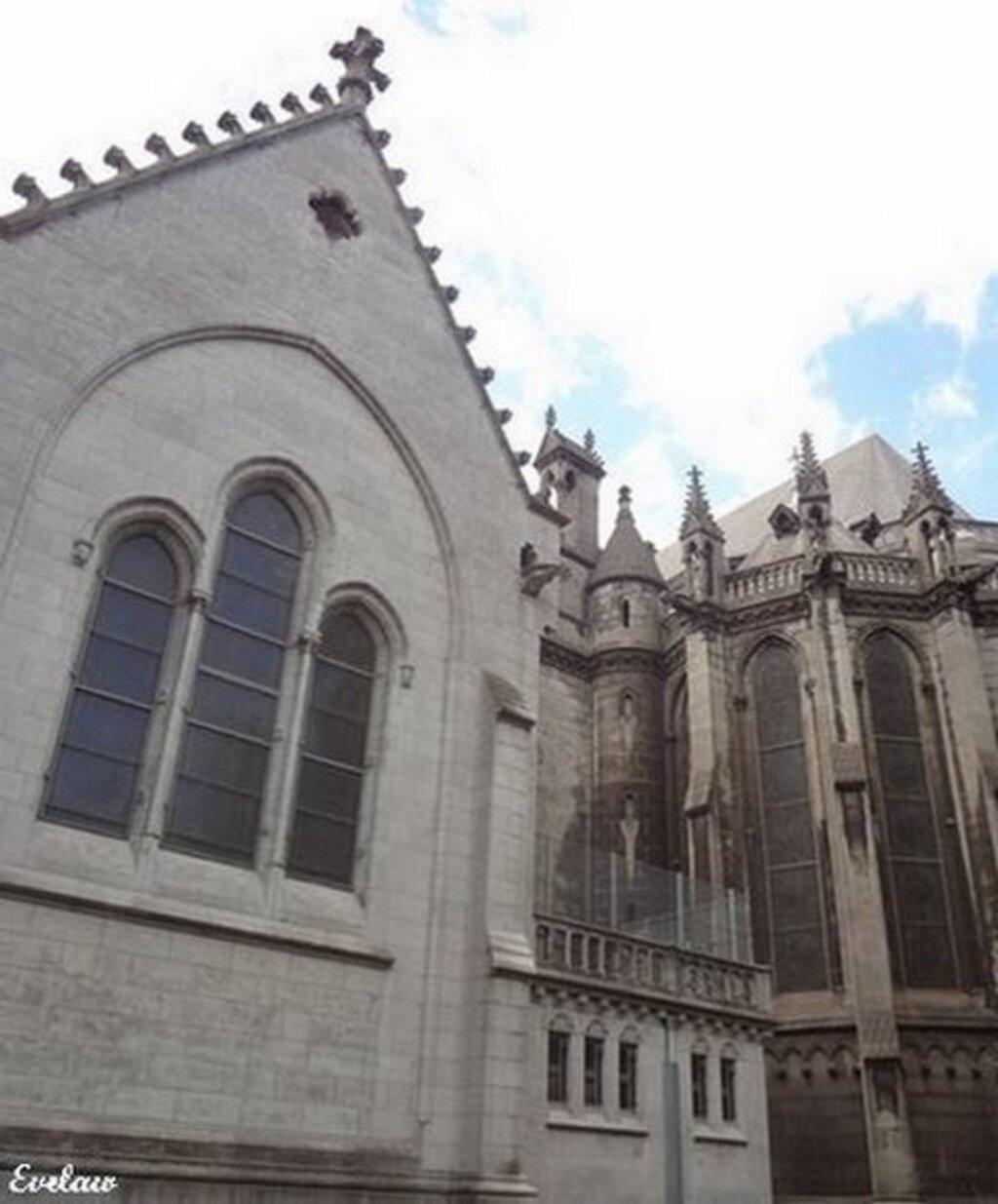 Notre Dame de la Treille - Lille (1)