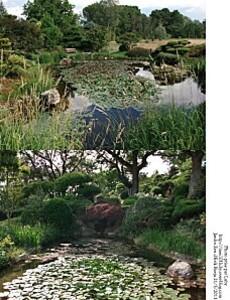 jardin zen 7