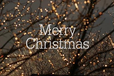 Bonne fêtes!