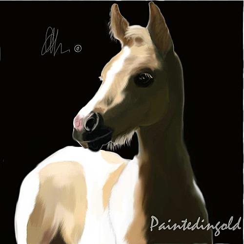 shadowed foal by paintedingold-d49e3t2