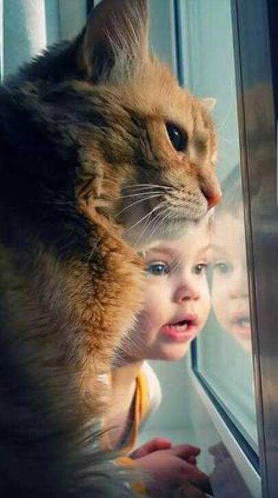 I believe the little human and his orange tabby cat friend are looking at something interesting.