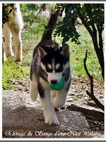 Ourika (2 mois)