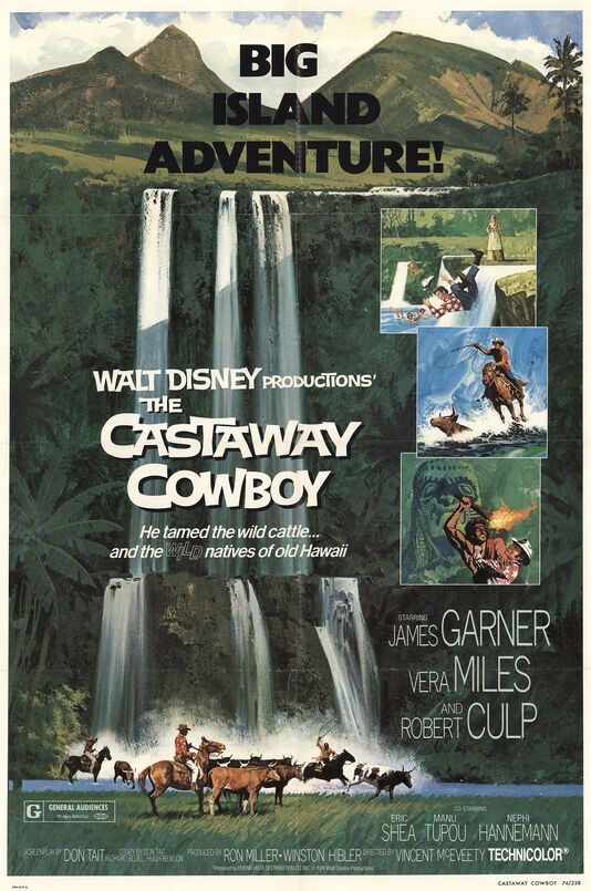 THE CASTAWAY COW BOY box office USA 1974
