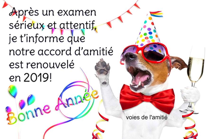 """Résultat de recherche d'images pour """"renouvellement amitié 2019"""""""