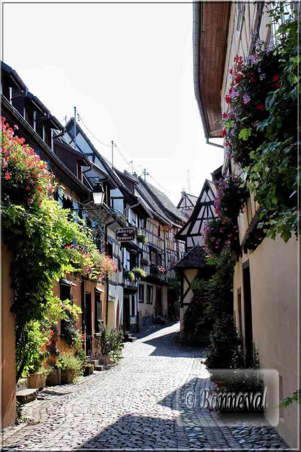 dAlsace route des vins de Thann à Wettolsheim, Eguisheim