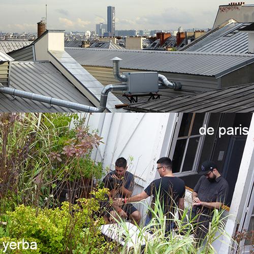 VERT PARIS - 1