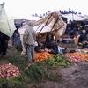 douar gzoula - souk - rayon fruits et légumes et la boue