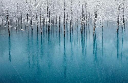 La magie des lacs gelés.....