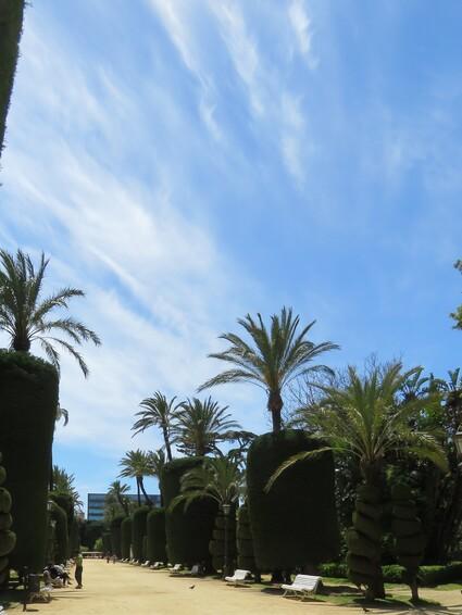 Cadix - Les jardins