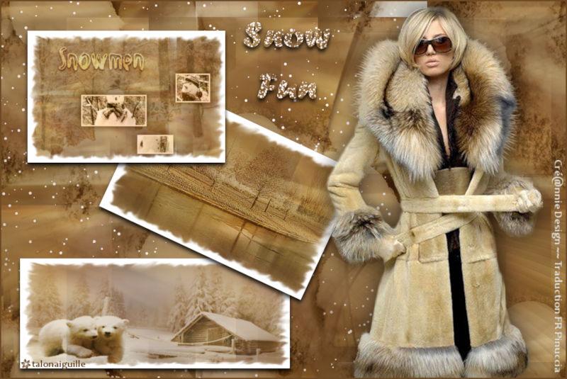 *** Snow Fun ***