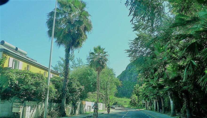23/5/19 : Sur la route jusqu'à Tévelave (Réunion) 1/6