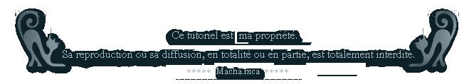 * L'outil  Pinceau Artistique VxNV