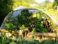 Jardins du Lison