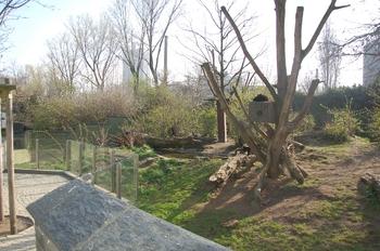 zoo cologne d50 2012 016