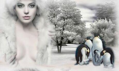 Bannières hiver pour vos blog ..