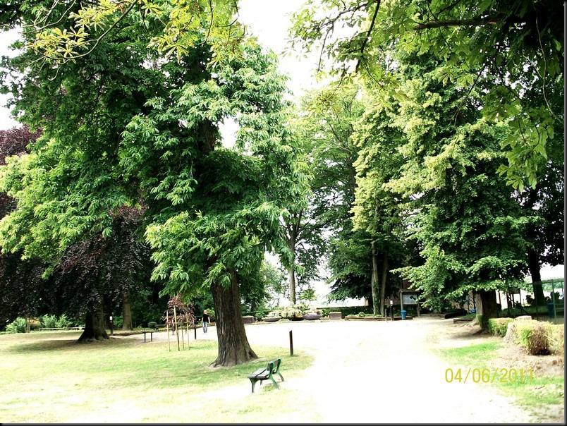le parc arboretum de jumet058