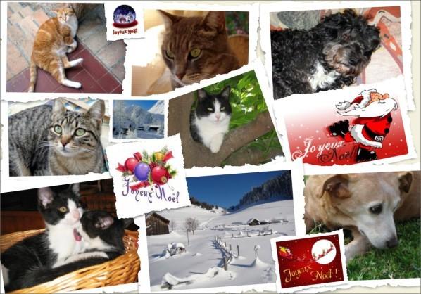 joyeuxnoelblog.jpg