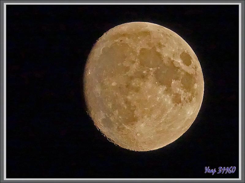 Pleine Lune - 2 jours vue de Lartigau - Milhas - 31