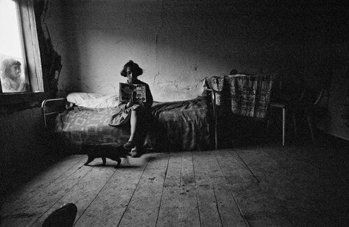 11 - Des chats et des vielles dames, encore