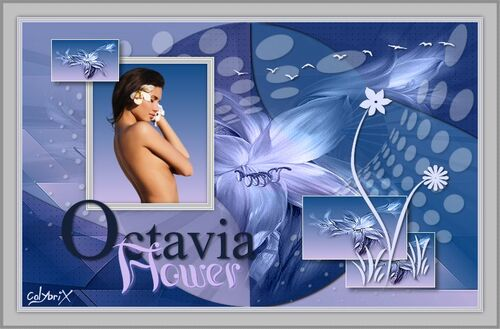 Traduction Octavia d'Ildiko KJK