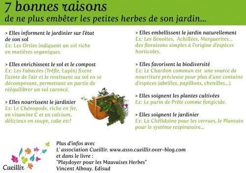 7 bonnes raisons ...