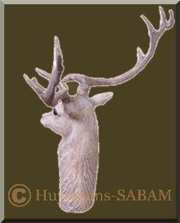 Sculpture en ronde-bosse: tête de cerf, dos - Arts et sculpture: artiste peintre, sculpteur contemporain